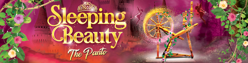 Sleeping Beauty: The Panto